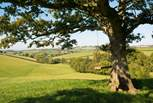 The Owners have even provided a double swing at the top of one of the farm walks with outstanding views.