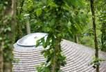 Owl's cedar tiled roof.