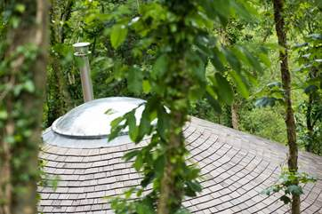 Owl's cedar tiled roof.