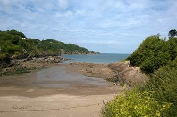 The beach is a perfect mix of sand and rock pools. To the left is another bay which is dog friendly all year round.