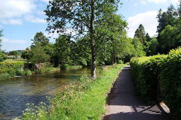 The riverside walk into Dulverton.