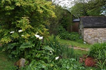 A lovely garden at the front of the cottage, with a stone shed tucked away in the corner.