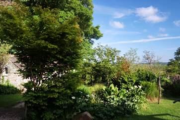 Such a pretty garden.