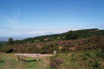 For walkers there is not only the South West Coast Path on the doorstep but the wilds of Exmoor National Park and the Quantock Hills too.