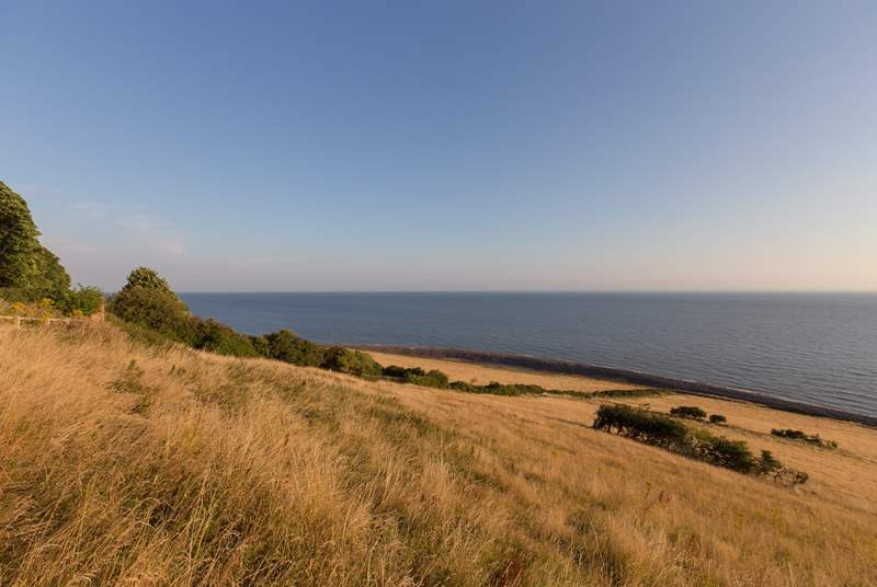 This is the setting for the cottage - Greenaleigh Farm is high up above the coast with pathways through the fields down to the little rocky beach