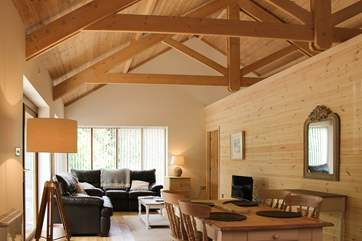 The open plan living-area with warm wood and high ceilings.
