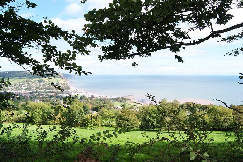 There is a wonderful route between Sidmouth and Budleigh Salterton - well worth exploring it for the fabulous views. This is Sidmouth.