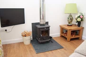 The cosy wood-burner.