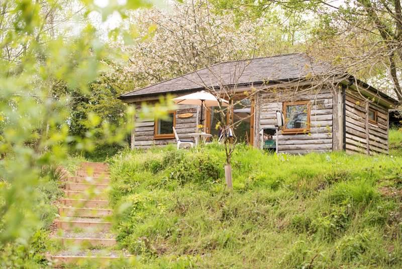 Ashley's Shack is a delightful cabin.