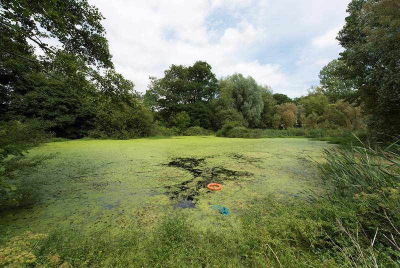 The natural wildlife lake is a short walk away and is fully fenced but please take care with children.