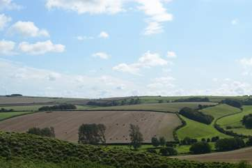 The rolling landscape of Dorset is beautifully managed by the farming community.