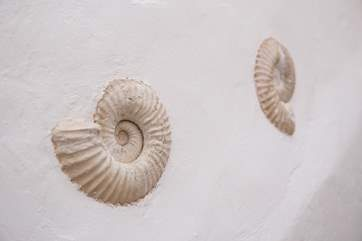 Local fossils set into the wall highlight the World Heritage status of this area.