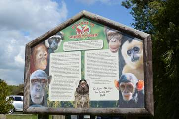 Monkey World is just 6 miles from Wareham, a great day out for all the family.