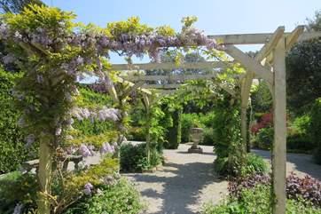 A pergola in the formal garden.