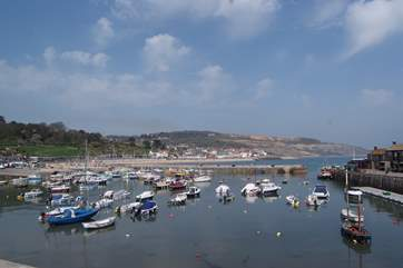 Branscombe is close to the Dorset border - this is Lyme Regis - just a short drive away and great for a family day out.