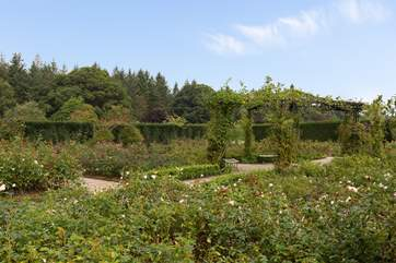RHS Rosemoor Gardens are an excellent day out.