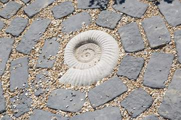 Fossil hunters will really appreciate this beautiful ammonite, evidence of life on earth from millions of years ago.