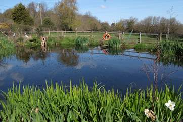 The lovely pond at the entrance to the farm.