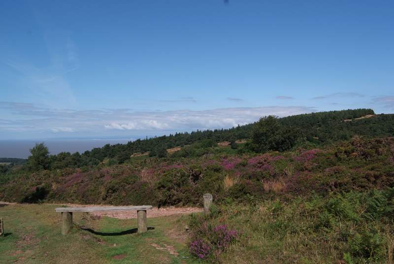 This is the view from the top of the Quantock Hills, a 9.5 thousand acre area of Outstanding Natural Beauty