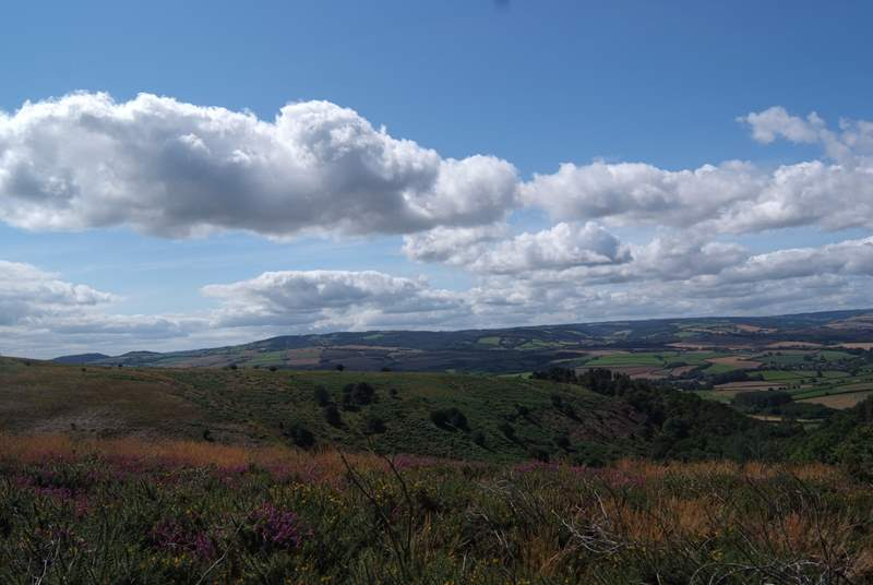 This lovely view is from the top of the Quantock Hills looking far across the Vale of Taunton to Exmoor.