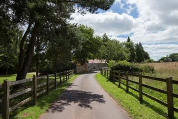 The Coach House Stables is approached down a beautiful drive, lined with copper beech trees.