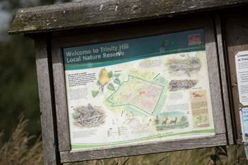 And Trinity Hill Nature Reserve again is within walking distance.