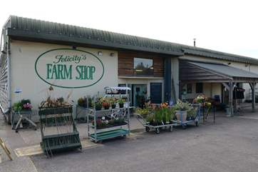 Felicity's award winning farm shop is just over the border into Dorset and has some delcious produce for the BBQ.
