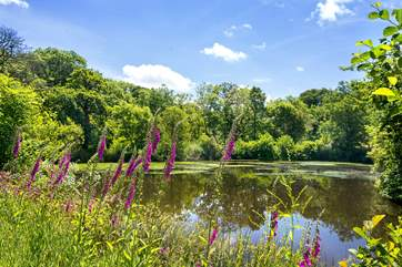 A short walk through the grounds, take you to the lake where wildlife can be discovered