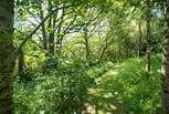 There are 30 acres of land for you to explore with mown paths through wildflower fields.