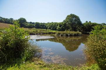 The lake has a mown path all around, and similar paths are mown across the fields.
