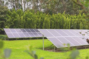 The solar farm in the grounds provides all the electricity needs of The Emerald.