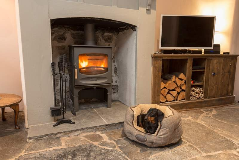 Your four legged friend will love snuggling up by the fire after a long walk in the countryside.
