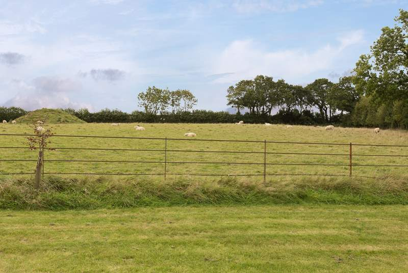 This is the outlook from your garden. The resident sheep will happily watch you from the meadow.