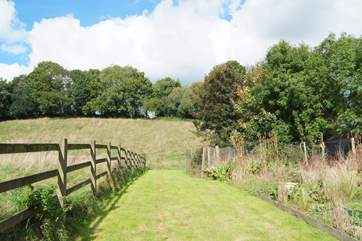 There is so much space for children to explore.  This paddock is next to the gardens and at the top is a tree house with professionally installed zip wire (you will be asked to sign a Disclaimer if yo