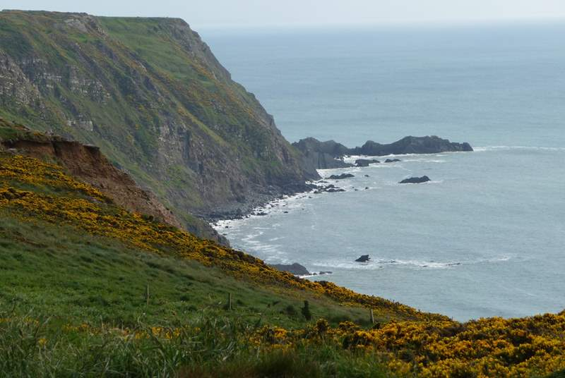 Don your walking boots and take to the coastal path.