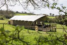 Murciano Safari Tent - Holiday Cottage - 1.4 miles N of Shaftesbury
