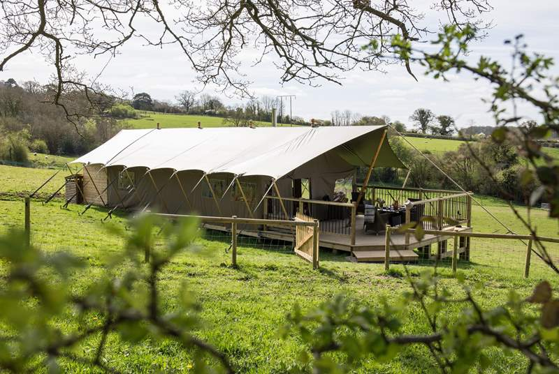 Glamping in style, your luxury safari tents awaits you.
