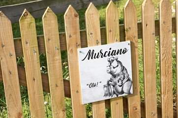 Welcome to Murciano!