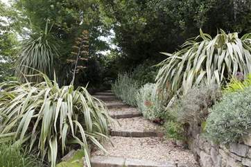 A Victorian garden with unusual plants.