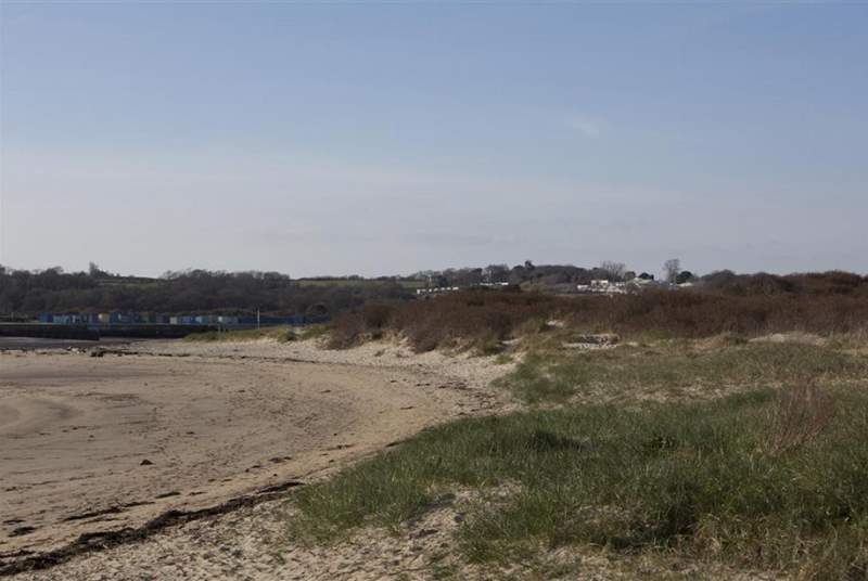 Bembridge sand dunes - just across the road!