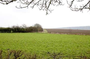 Peaceful views across the fields towards Afton Down (site of the original Isle of Wight Festival in the 1970's)