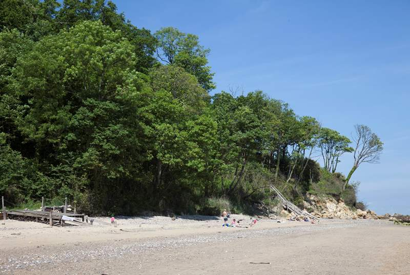 The beach back onto woodlands with paths leading to Seagrove Bay and St Helens beach