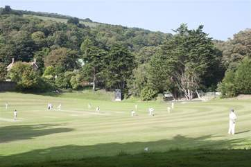 Enjoy cricket? Why not go and watch the local team play.