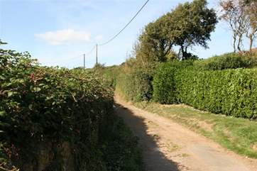 Cottage is located on small country lane