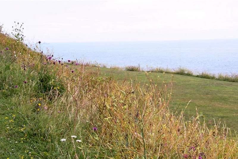 Go for long walks along the coast path.