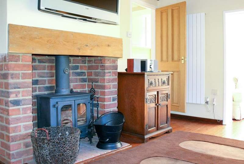 Log Burner in the living area