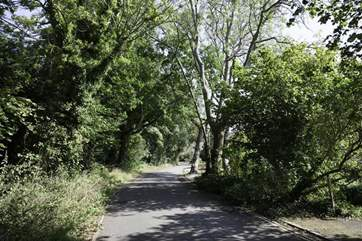 Gully Road which will lead you to Seagrove Bay