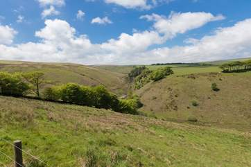 The scenery of Exmoor National Park is fabulous. The open moors are a short walk away from the village.