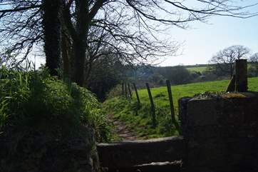 You can find lots of wonderful walks in this beautiful part of Cornwall.
