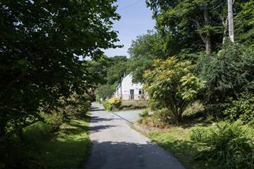 The approach to the cottage via the driveway.